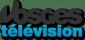 logo-vosges-tv