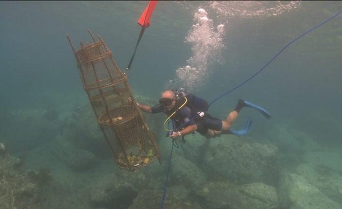 Les travailleurs de la mer, 12 ans après