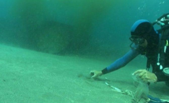 Méditerranée, enquête en eau profonde